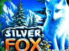 Silver Fox в казино 777