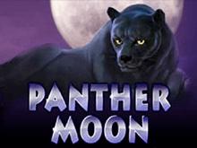 Panther Moon в казино 777