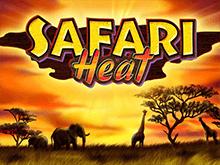 Safari Heat в казино 777