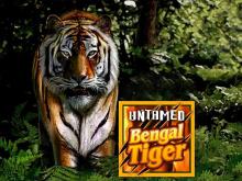 Игровой автомат Дикий Бенгальский Тигр от компании Микрогэйминг